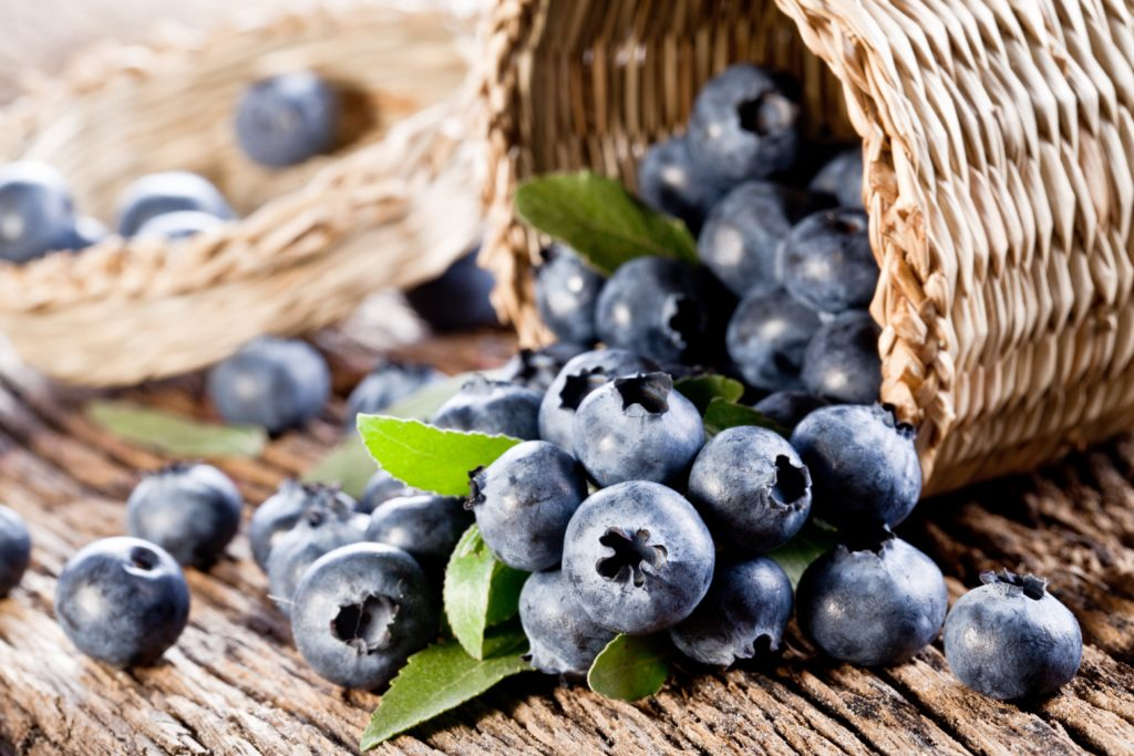 1770 mercantile blueberries